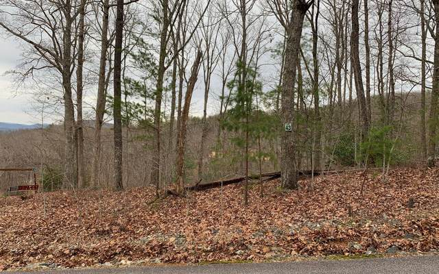 LT 43 Chicory Dr E, Blairsville, GA 30512 (MLS #303760) :: Path & Post Real Estate