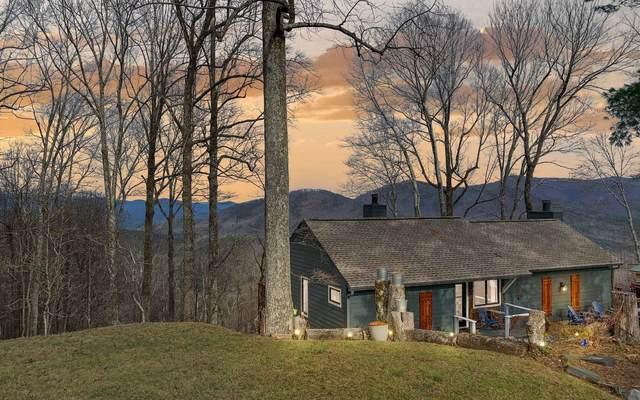 851 Walnut Ridge, Ellijay, GA 30536 (MLS #303773) :: Path & Post Real Estate