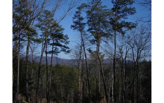 LT 12 Vista Heights, Ellijay, GA 30540 (MLS #303875) :: Path & Post Real Estate