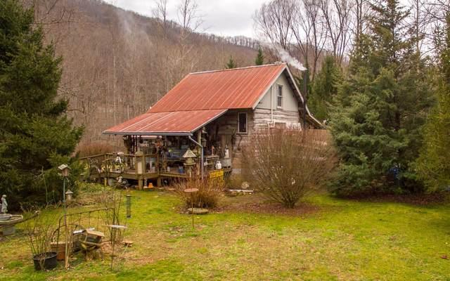 1064 Muskrat Creek Rd, Hayesville, NC 28904 (MLS #303911) :: Path & Post Real Estate