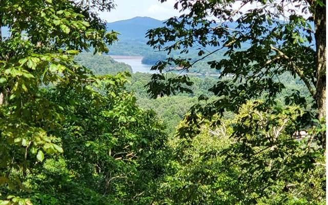 85 Little Deer Run, Hayesville, NC 28904 (MLS #303946) :: Path & Post Real Estate