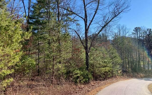 LOT 8 Gladson Ln, Blairsville, GA 30512 (MLS #303963) :: Path & Post Real Estate