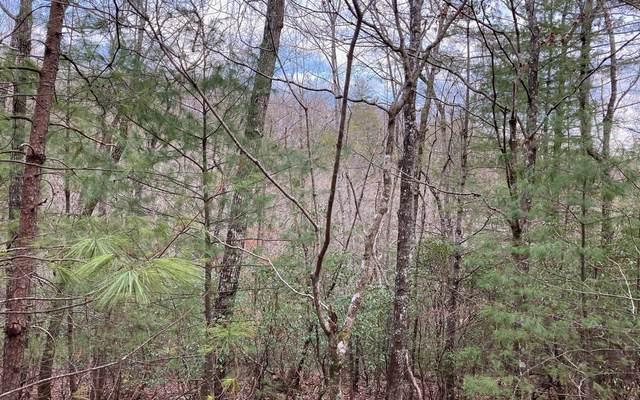 LT 15 Mission Ridge, Hayesville, NC 28904 (MLS #304050) :: Path & Post Real Estate
