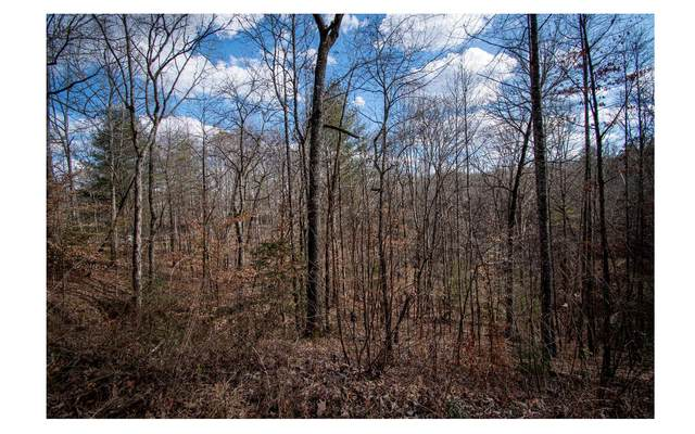 00 Robin Road, Murphy, NC 28906 (MLS #304416) :: Path & Post Real Estate