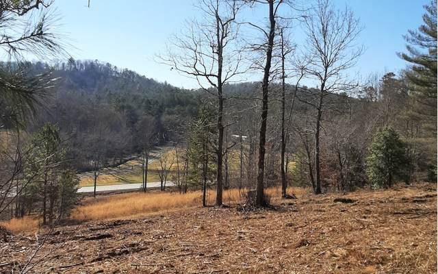 LT 3 Walnut Hills, Mineral Bluff, GA 30559 (MLS #304423) :: RE/MAX Town & Country