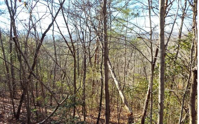 Lot 27 Mission Ridge, Hayesville, NC 28904 (MLS #304440) :: Path & Post Real Estate