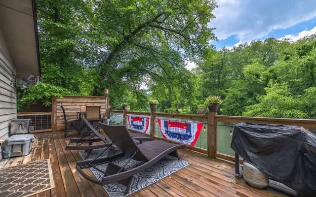 203 Blackberry Drive, Mineral Bluff, GA 30559 (MLS #304514) :: Path & Post Real Estate