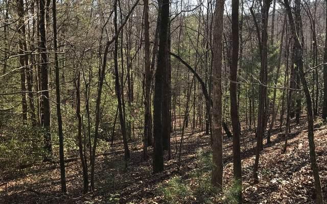 LT 41 Trails End Summit, Ellijay, GA 30540 (MLS #304584) :: Path & Post Real Estate