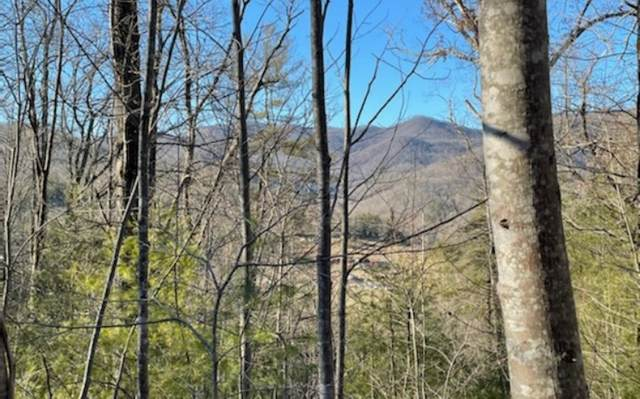 379 Country Hill Rd, Hiawassee, GA 30546 (MLS #304596) :: RE/MAX Town & Country