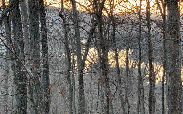 0 Chatuge Crest Drive, Hayesville, NC 28904 (MLS #304627) :: RE/MAX Town & Country
