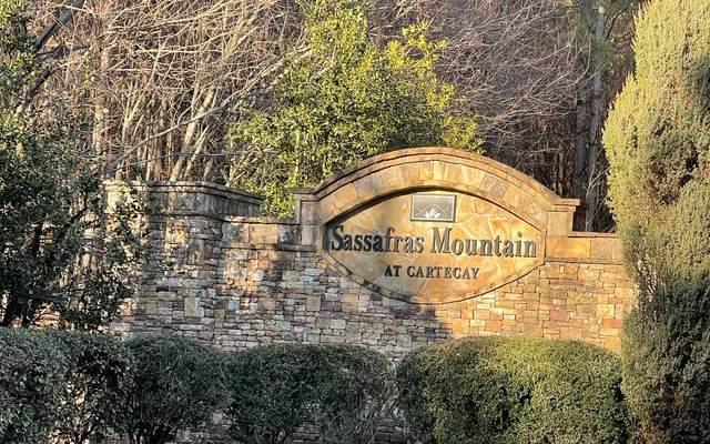 LT 25 Foxpaw Leaf Lane, Ellijay, GA 30536 (MLS #304636) :: Path & Post Real Estate