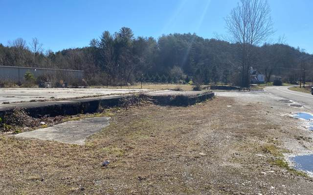 8510 Lakewood Hwy, Mineral Bluff, GA 30559 (MLS #304663) :: RE/MAX Town & Country