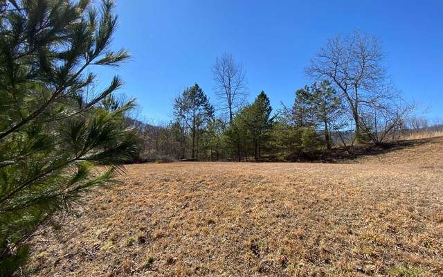 000 Theron Mccray Rd, Hayesville, NC 28904 (MLS #304689) :: RE/MAX Town & Country