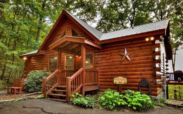 203 Chimney Rock Rd, Cherry Log, GA 30522 (MLS #304702) :: RE/MAX Town & Country