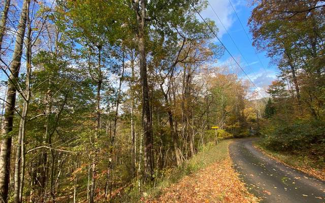 Chestnut Mountain Dr, Rabun Gap, GA 30568 (MLS #304709) :: RE/MAX Town & Country