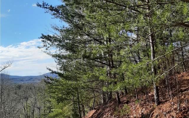 LT 33 Raven Ridge Drive, Mineral Bluff, GA 30559 (MLS #304719) :: RE/MAX Town & Country