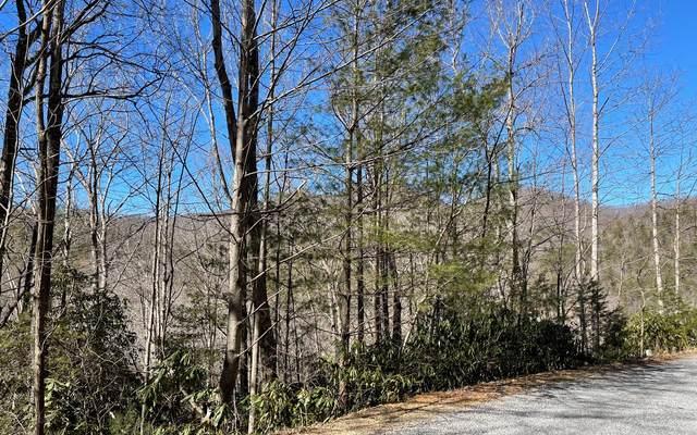 LT 15 Soapstone, Hiawassee, GA 30546 (MLS #304761) :: RE/MAX Town & Country