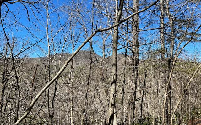 LT 7 Soapstone, Hiawassee, GA 30546 (MLS #304782) :: Path & Post Real Estate