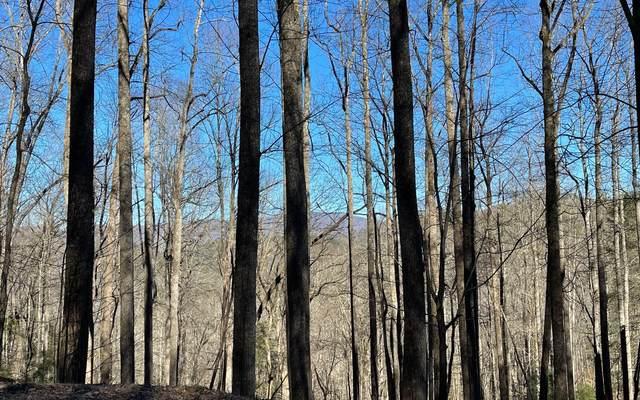 TR 11 Soapstone, Hiawassee, GA 30546 (MLS #304791) :: Path & Post Real Estate