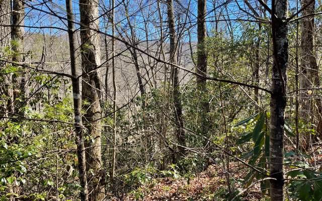 TR 1E Soapstone, Hiawassee, GA 30546 (MLS #304793) :: Path & Post Real Estate