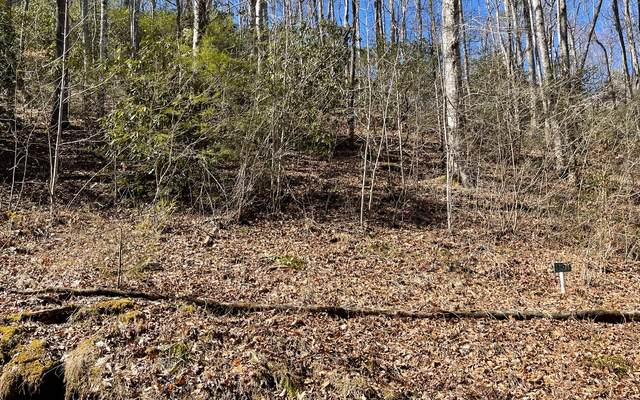 TR 5 Soapstone, Hiawassee, GA 30546 (MLS #304794) :: Path & Post Real Estate