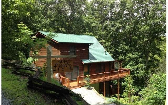 244 Deep Gap Road, Blue Ridge, GA 30513 (MLS #304833) :: Path & Post Real Estate