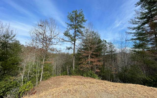 119 The Nest At Brr, Young Harris, GA 30582 (MLS #304842) :: Path & Post Real Estate