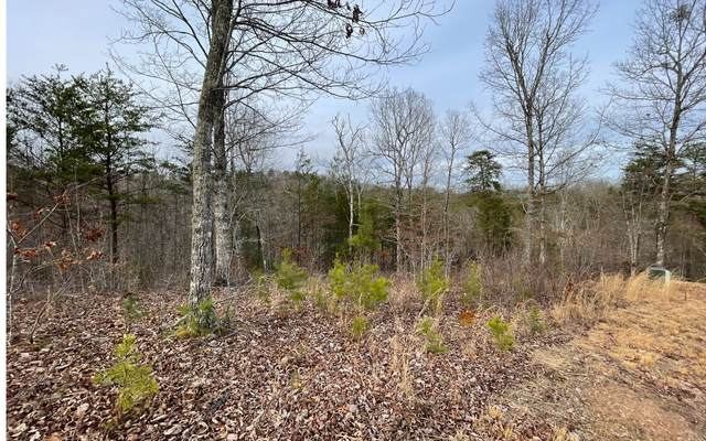 109 The Nest At Brr, Young Harris, GA 30582 (MLS #304851) :: Path & Post Real Estate