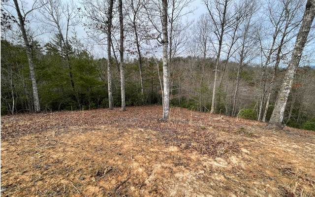 115 The Nest At Brr, Young Harris, GA 30582 (MLS #304853) :: Path & Post Real Estate