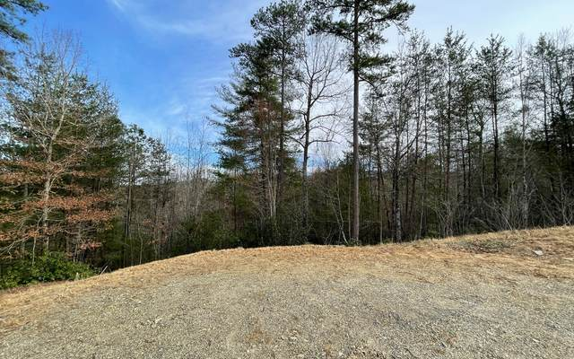 118 The Nest At Brr, Young Harris, GA 30582 (MLS #304855) :: Path & Post Real Estate