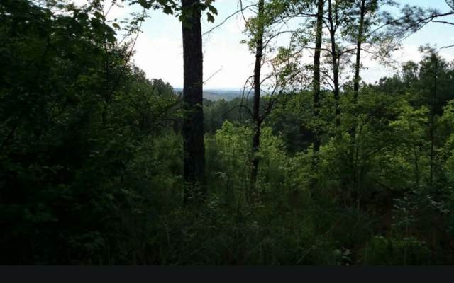 L 40 Highland Woods, Copperhill, TN 37317 (MLS #304901) :: Path & Post Real Estate