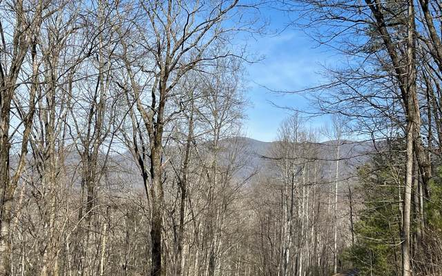 LOT 8 Skyview At Wildlife, Hayesville, NC 28904 (MLS #304916) :: Path & Post Real Estate