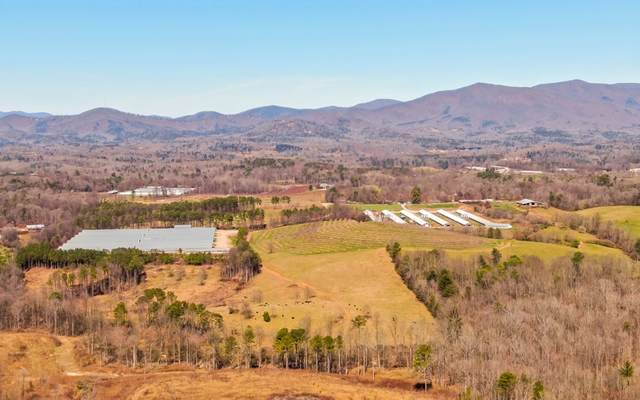0 Parker Road, Ellijay, GA 30536 (MLS #304970) :: RE/MAX Town & Country