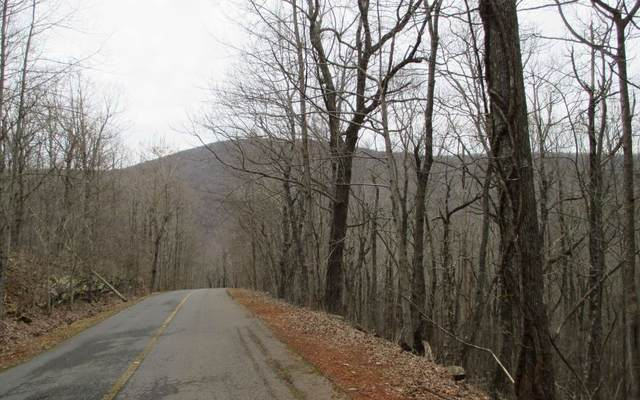 LT 56 Rimrock Road, Jasper, GA 30143 (MLS #305009) :: Path & Post Real Estate