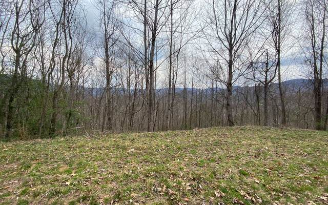 # 120 Shiloh Drive, Hayesville, NC 28904 (MLS #305099) :: Path & Post Real Estate