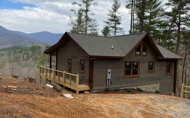 969 Hidden Lake Dr, Cherry Log, GA 30522 (MLS #305116) :: Path & Post Real Estate