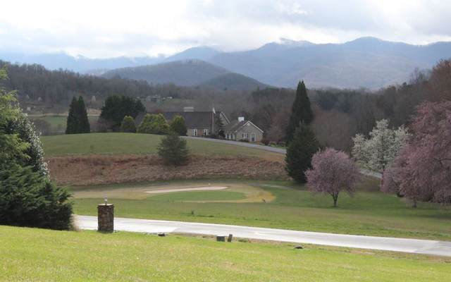 106A Mountain Harbour Dr, Hayesville, NC 28904 (MLS #305194) :: Path & Post Real Estate