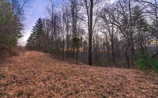 Middle Creek Road 36, Blairsville, GA 30512 (MLS #305205) :: RE/MAX Town & Country