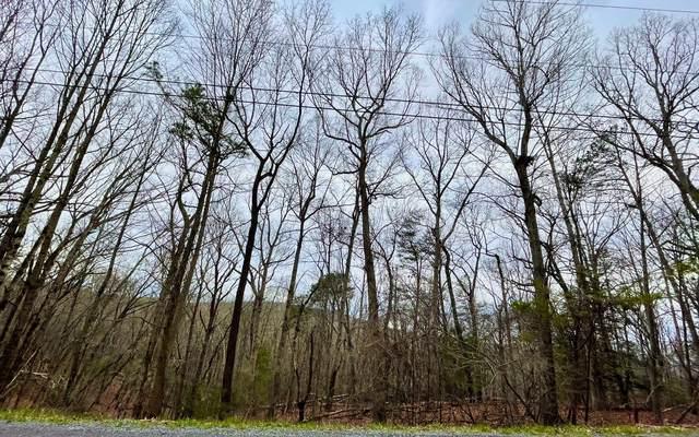 Hickory Ridge Dr, Ellijay, GA 30536 (MLS #305254) :: Path & Post Real Estate
