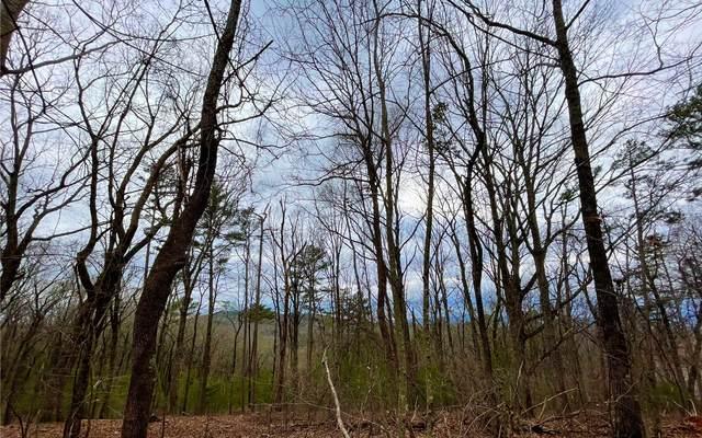 Hickory Ridge Dr, Ellijay, GA 30536 (MLS #305256) :: Path & Post Real Estate