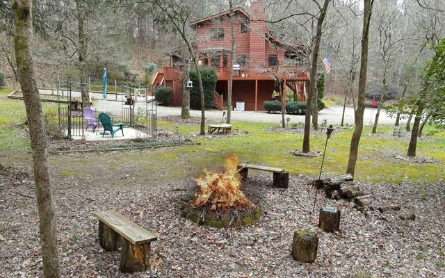 110 Souther Springs Dr, Blairsville, GA 30512 (MLS #305273) :: Path & Post Real Estate