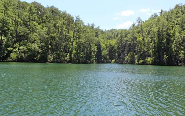 17 Wilderness Lake Circ, Murphy, NC 28906 (MLS #305337) :: Path & Post Real Estate