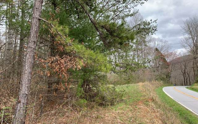 Tusquittee Road, Hayesville, NC 28904 (MLS #305351) :: Path & Post Real Estate