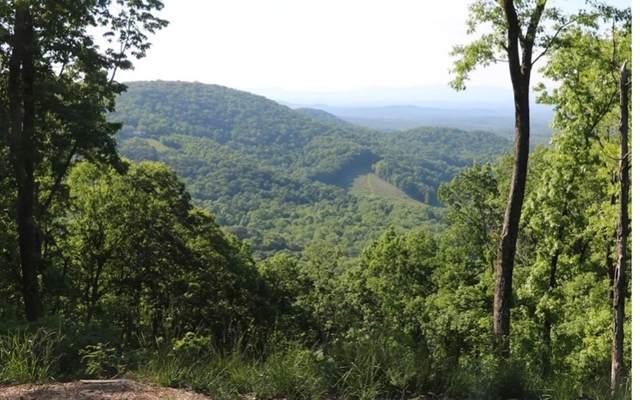 0 High Rock Trail #289, Ellijay, GA 30536 (MLS #305570) :: Path & Post Real Estate