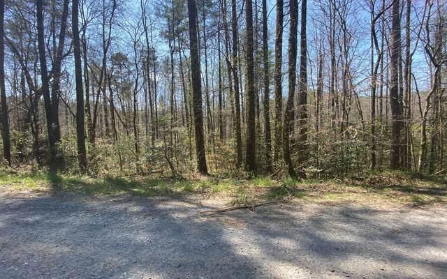 L 169 Rodgers Creek Road, Ellijay, GA 30540 (MLS #305574) :: Path & Post Real Estate