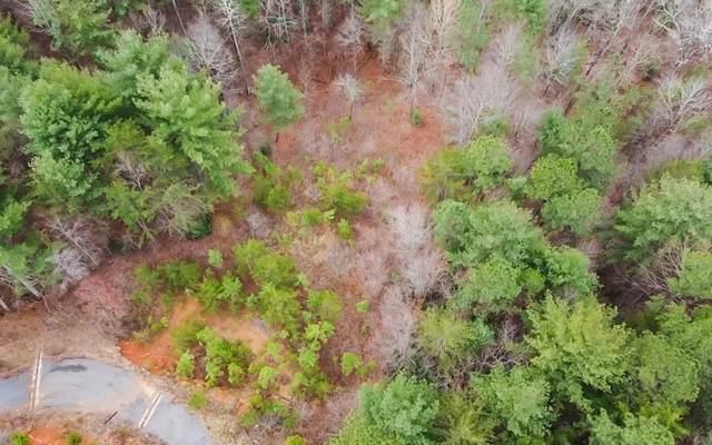 TR 32 Bear Paw Views, Murphy, NC 28906 (MLS #305578) :: Path & Post Real Estate