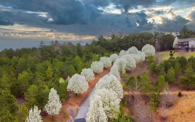 00 Choctaw Ridge Trail, Murphy, NC 28906 (MLS #305611) :: Path & Post Real Estate