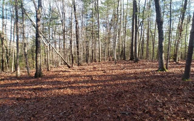 LT 15 My Forest At My Mtn, Morganton, GA 30560 (MLS #305644) :: Path & Post Real Estate