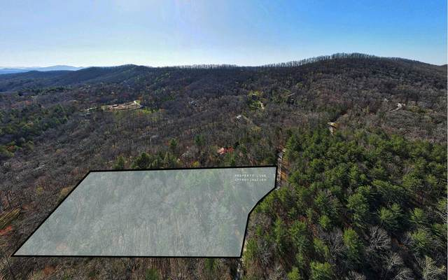 LOT 8 Birchwood Trails, Morganton, GA 30560 (MLS #305736) :: Path & Post Real Estate