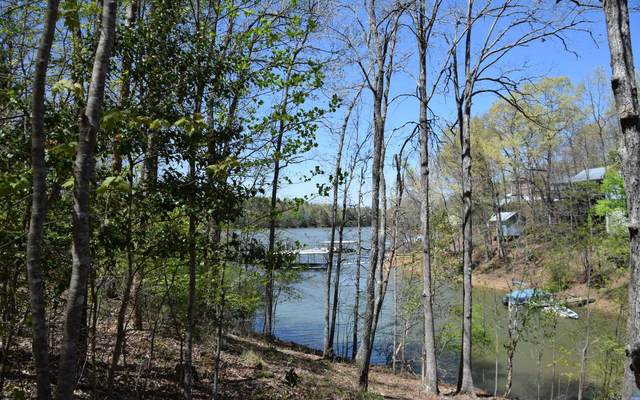 LT 25 Talon Trace, Blairsville, GA 30512 (MLS #305749) :: Path & Post Real Estate